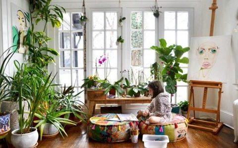 گل و گیاه در دکوراسیون